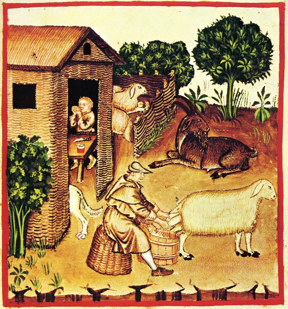 cabaña-ganadera-edad-media